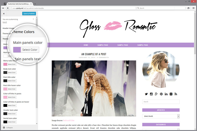 Gloss Romtaic WordPress customizer