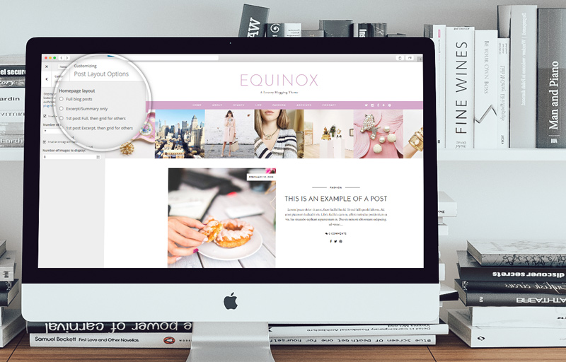 equinox-customizer-2