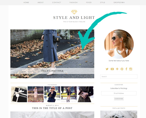 Style and Light WordPress Theme with Slider