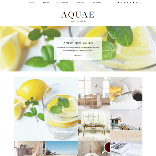 WordPress Theme: Aquae