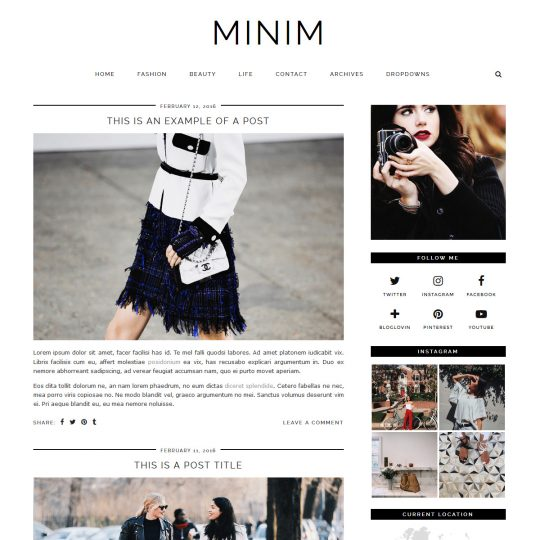 WordPress Theme: MINIM
