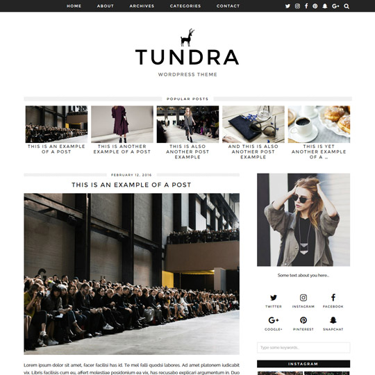 WordPress Theme: Tundra